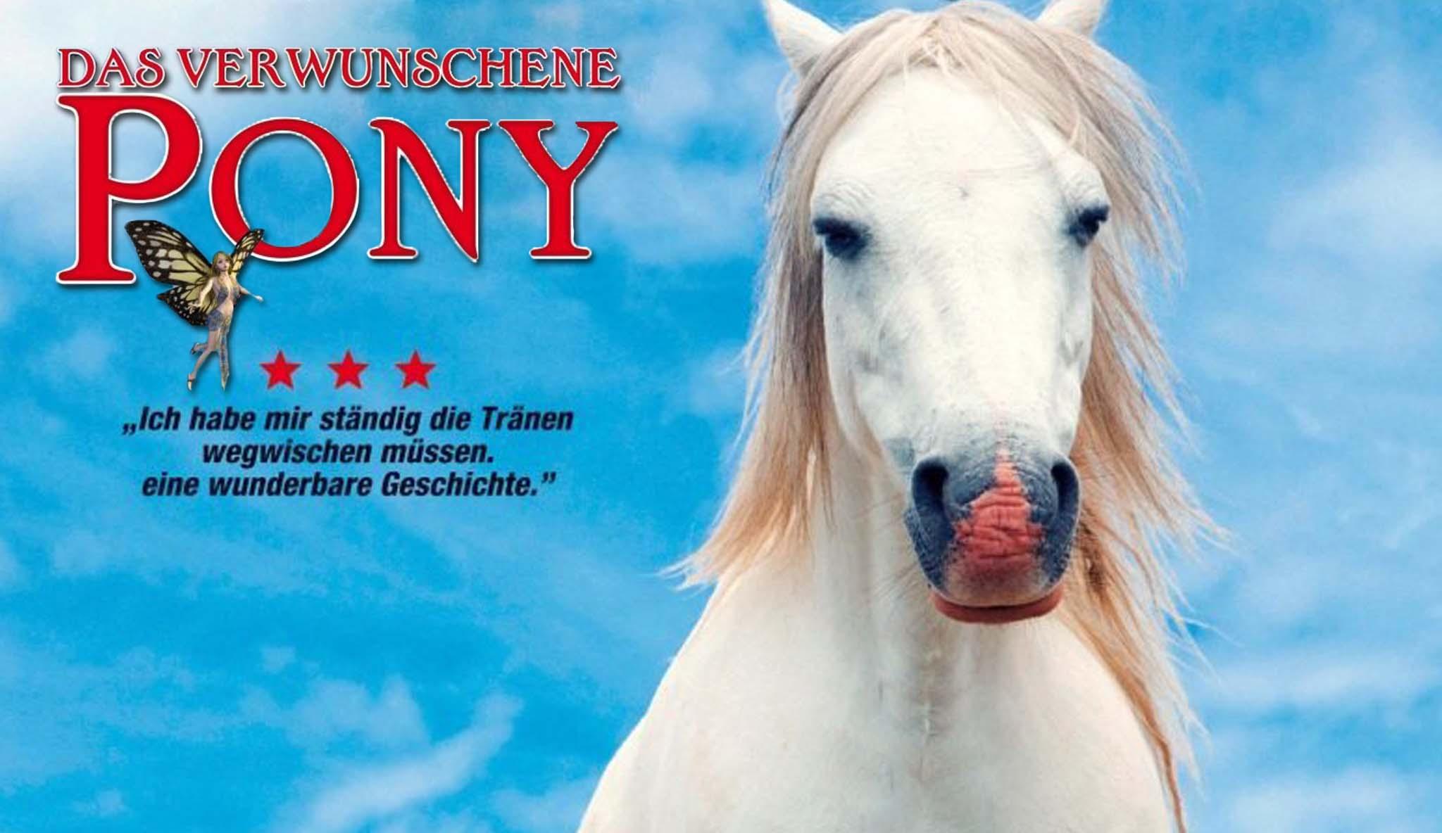 die-schonsten-pferdefilme-das-verwunschene-pony\widescreen.jpg