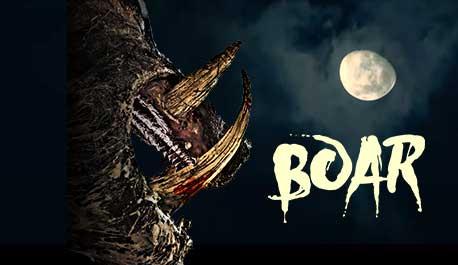 boar\widescreen.jpg