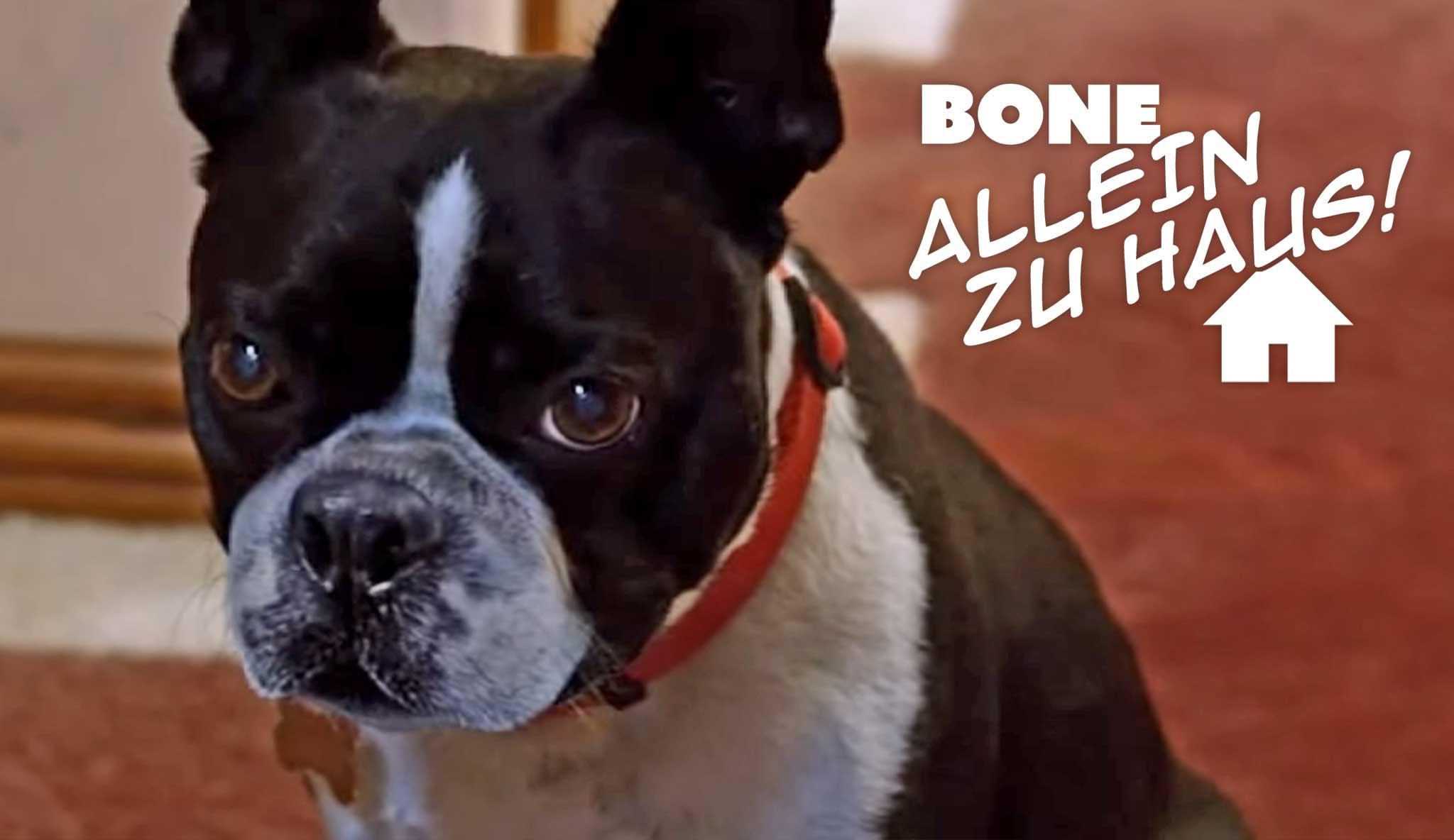 bone-allein-zu-haus\widescreen.jpg