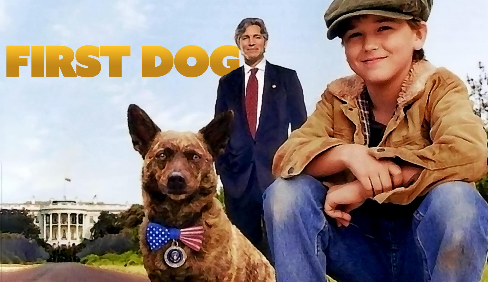 first-dog-zuruck-nach-hause\header.jpg