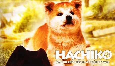 hachiko-wahre-freundschaft-wahrt-ewig\widescreen.jpg