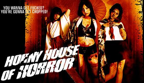 horny-house-of-horror\widescreen.jpg
