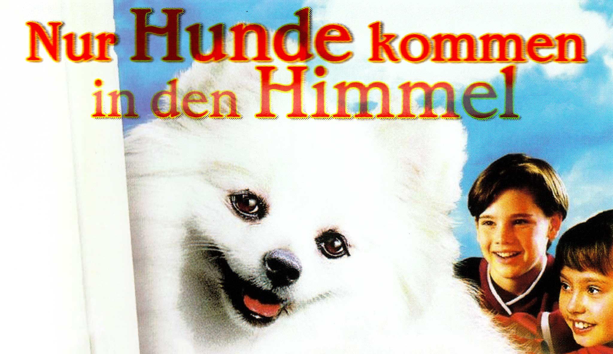 nur-hunde-kommen-in-den-himmel\header.jpg