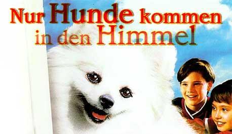 nur-hunde-kommen-in-den-himmel\widescreen.jpg