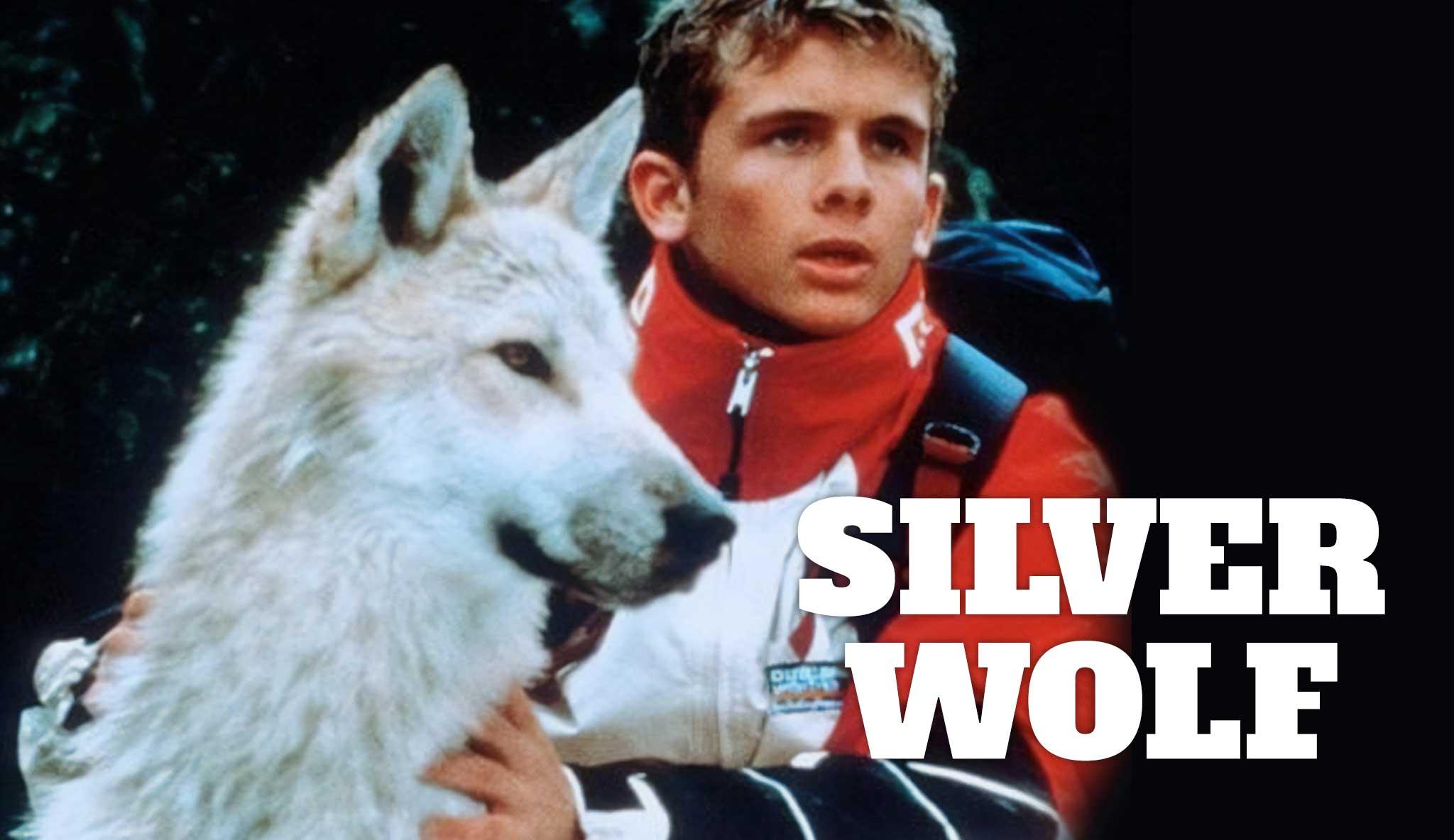silver-wolf\header.jpg
