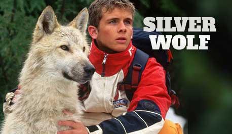 silver-wolf\widescreen.jpg