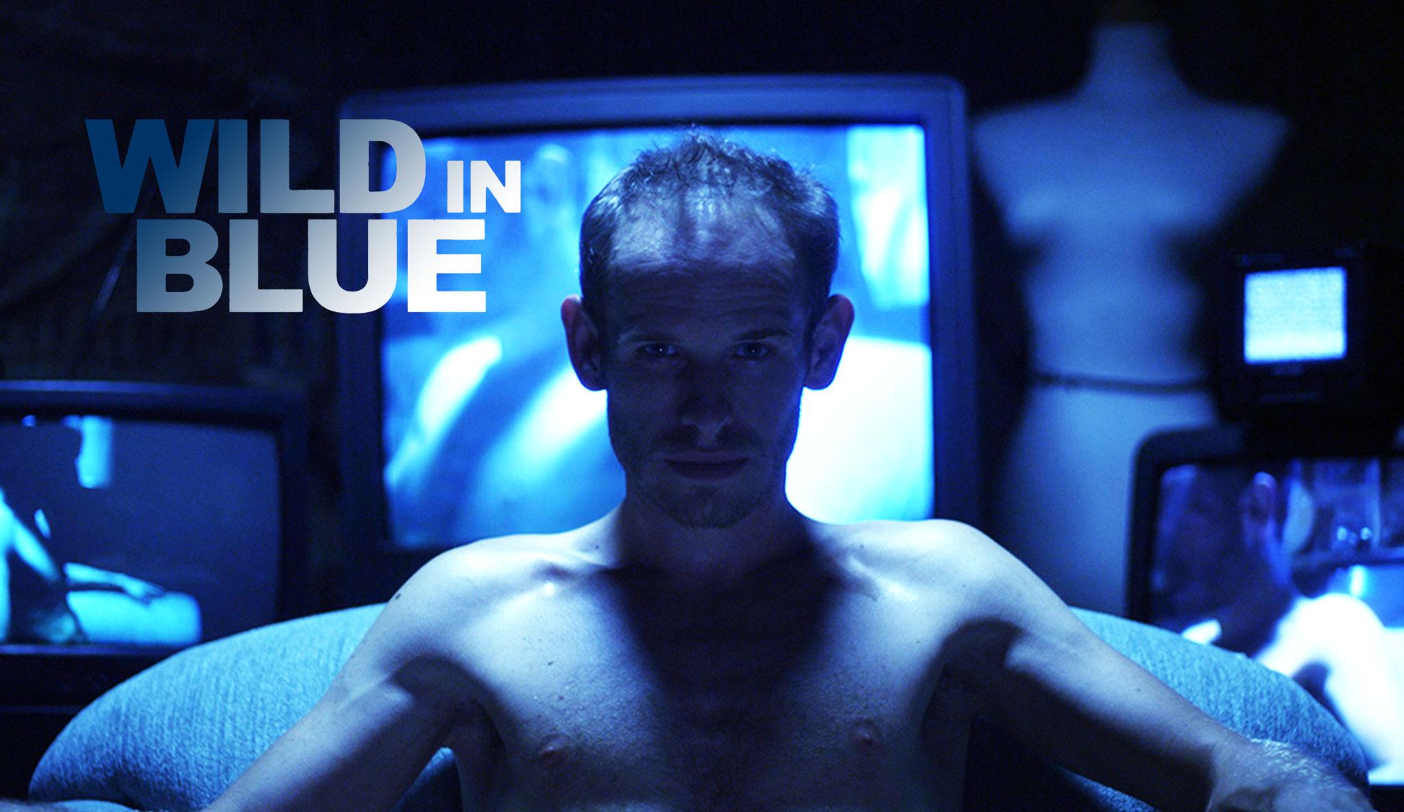 wild-in-blue\header.jpg